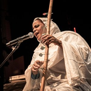 Noura Mint Seymali performs at Kennedy Center Milennium Stage, November 2019. Photography by Nosrat Tarighi.